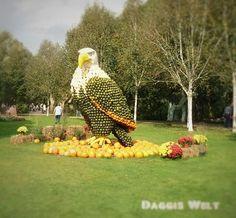 Daggis Welt – rund um Bücher, Kaiserslautern und die Welt | Seite 2