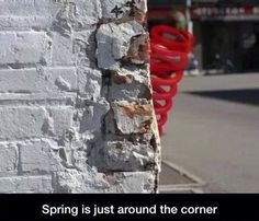 Spring is so close! You could say it's just around the corner! Around The Corner, Fort Collins, Food Gifts, St Patricks Day, Spring Time, Cool Words, Funny, Easter, Humor