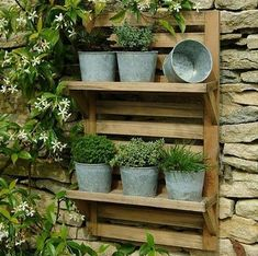 i like the idea of some shelves for small pots for geraniums, pansies, an herb garden...I would use terracotta pots since I have so many.