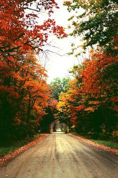 Autumn by (ZacharySnellenberger) | Follow on Tumblr