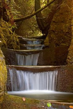 Tiered Waterfall, Oregon