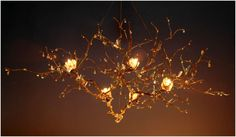 Decorate your home with these floating branch chandeliers (inquire | Go Natural With a Branch Chandelier | POPSUGAR Home