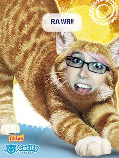 My friend Ann :)  Pawsitively Pets: We've Been Catified!