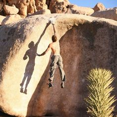 Street Car Named Desire (v7) in Joshua Tree CA. This climb is impossible to start.