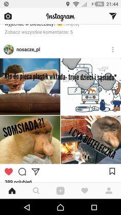 Wtf Funny, Funny Memes, Polish Memes, Text Memes, Grumpy Cat, Im In Love, Behind The Scenes, Funny Animals, Geek Stuff