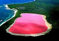 Caused By The #combo Of Algae & Particles In The Water Instead Of #blue Visibility We Get Pink. There's Around #10 Of These Wonders On Our Planet.