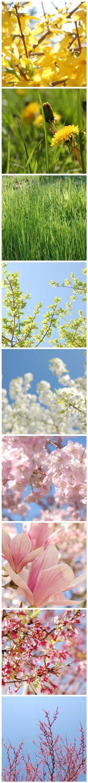 Springtime. It's coming.