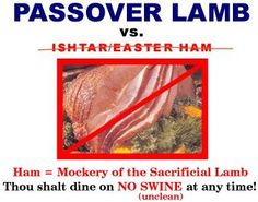 Ishtar/Easter Ham You might be surprised where the Easter ham came from. It didn't come from our Jewish Messiah because He wouldn't have eaten it. Ishtar Easter, Passover Feast, Feast Of Unleavened Bread, Feasts Of The Lord, Messianic Judaism, Easter Ham, Pagan Gods, Hebrew Words, Word Study