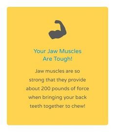 Dentaltown - Your jaw muscles are tough. Jaw muscles are so strong that they provide about 200 pounds of force when bringing your back teeth together to chew!