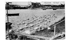 Vintage B&W postcard The Swans, Weymouth, Dorset, Hitch D 76/1