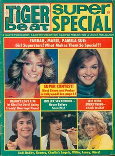 tiger beat magazine covers from the 70's - Google Search