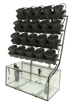 Aquaponics DIY How To Make - Clarifying Realistic Solutions Of Aquaponics Greenhouse - Lapiner Green Bros