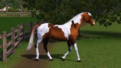 The Sims 3 Horses | Found on forum.thesims3.com