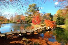 Maymont Park - Richmond, VA <3  One of my favorite places while living in Richmond, especially during autumn.