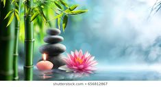 Photo about Spa - Natural Alternative Therapy With Massage Stones And Waterlily In Water. Image of stack, therapy, balance - 94870026 Meditation Musik, Deep Meditation, Relaxation Meditation, Framed Wall Art, Canvas Wall Art, Framed Prints, Zen Background, Bamboo Water Fountain, Relaxation Pour Dormir