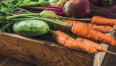 Brico Depot - It's good to be home Carrots, Vegetables, Food, Plant, Essen, Carrot, Vegetable Recipes, Meals, Yemek