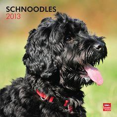 Schnoodles Wall Calendar: