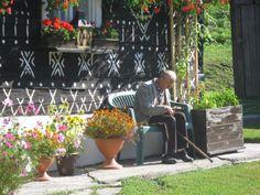 Wooden Cottage, Cabin Ideas, Czech Republic, The Locals, Traditional, Architecture, Plants, Travel, Arquitetura