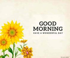 beautiful-good-morning-with-sunflowers