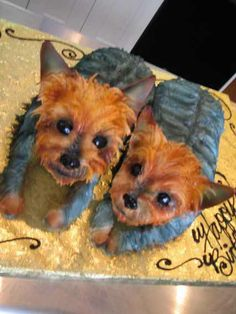 Yorkie Cake - Another person who likes their dogs too much.