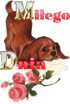Morning Images, Beautiful Roses, Scooby Doo, Emoji, Good Morning, Teddy Bear, Animation, Disney, Funny