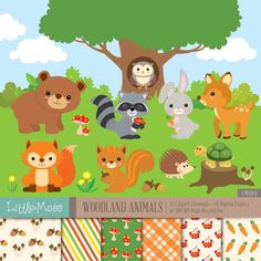 Woodland  Animals Digital Clipart and Papers