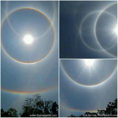 Solar halos