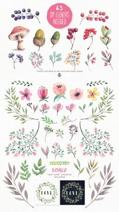 Magical watercolour animals & flowers: vol 3 on Behance