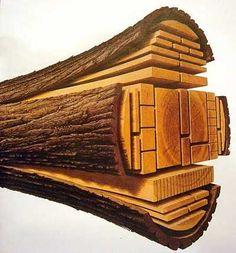 Zuschnitt eines Baumstamms, schematisierte Ansicht