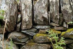 Dry stone wall. I love using stone in my garden, paths, walls, just beautiful.
