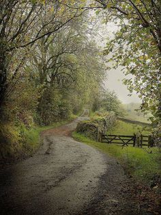 Beautiful little Country Lane, Cumbria, England. Perfect for a trail ride