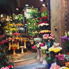 A lovely little flower shop on a tiny street in Bologna - Instagram by dante8