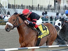 Two-time Carter Handicap (gr. I) winner Dads Caps is scheduled to make his first start in more than seven months in the rescheduled $150,000 Toboggan Stakes (gr. III) Jan. 30 at Aqueduct Racetrack.