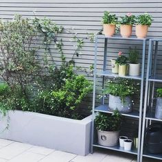 HYLLIS in/outdoor galvanised, Shelving unit. Suitable for both indoor and outdoor use. Back Garden Design, Backyard Garden Design, Vegetable Garden Design, Backyard Landscaping, Back Gardens, Small Gardens, Outdoor Gardens, Garden Shelves, Garden Paving