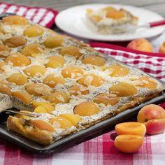 Aprikosen-Mohnkuchen