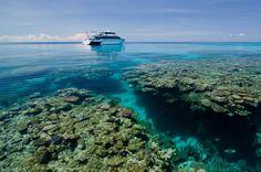 Expedition to Great Barrier Reef. Australia   Експедиція на Великий Бар'єрний Риф. Австралія
