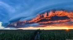 Huge, dramatic clouds lit pink and orange by the sunset are seen above a green…