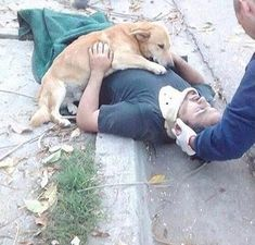 Dog wont stop hugging owner who was injured in a fall via aww on July 14 2018 at Animals And Pets, Cute Animals, Happy End, Dog Information, Dog Runs, Dog Show, Dog Quotes, Dog Owners, Dog Life