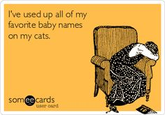 I've+used+up+all+of+my+favorite+baby+names+on+my+cats.