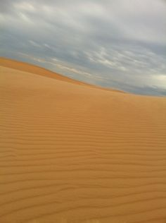 The wind-sculpted dunes of Little Sahara State Park in Oklahoma create a stark beauty.