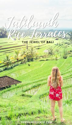Why you should visit UNESCO World Heritage Site Jatiluwih Rice Terraces and Yeh Hoo Waterfall in Bali, Indonesia.