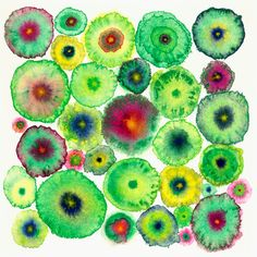 Large Canvas Abstract Print - Green Circles - Blooms 5 Green - Ltd Edition
