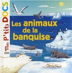 Les animaux de la banquise: Amazon.fr: Stéphanie Ledu, Delphine Vaufrey: Livres