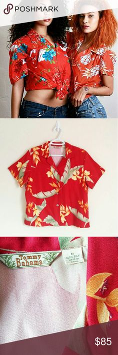 49✂Tommy Bahama Silk Tropical Hawaiian Shirt ✨NWOT✨  ⏩Get into the mix of tropical fun with this super luxurious shirt ⏩Made from 100% high-grade super soft silk, it feels so amazing and comfortable on ⏩Featuring deep red color with large-scale print of tropical palms & flowers ⏩The button-down V-neckline keeps the look relaxed, while the button adds the perfect finish ⏩Perfect for island getaway, beach hopping and relaxing at your favorite resort Tommy Bahama Tops Button Down Shirts