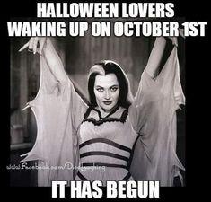 Need I say more 🖤🖤🖤🖤🖤 halloweenseason readytorock partyongarth halloweenmakeup Halloween Queen, Halloween Boo, Halloween Horror, Halloween Cards, Holidays Halloween, Vintage Halloween, Halloween Makeup, Happy Halloween, Halloween Decorations