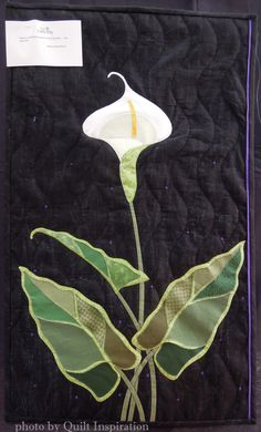 Calla Lily by Aileyn Renli Ecob. Featured Artist, 2015 DVQ show.  Photo by Quilt Inspiration.