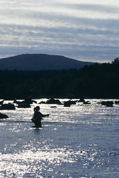 Fly fishing. Photo courtesy of Visit Finland © MEK Finnish Tourist Board.