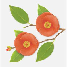 Appree Camellia leaf red sticky memo notes