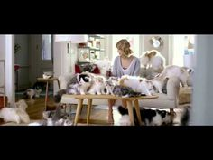 Finally, Kittens In a Commercial! Every Time Taylor Swift Drinks Coke, more Kittens Appear!