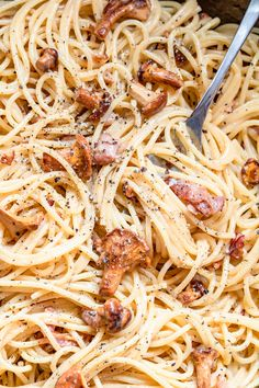 Spaghetti, Pasta, Dishes, Ethnic Recipes, Food, Tablewares, Essen, Meals, Yemek